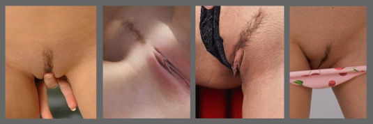 Pubic hair shaved in the 'landing strip' style