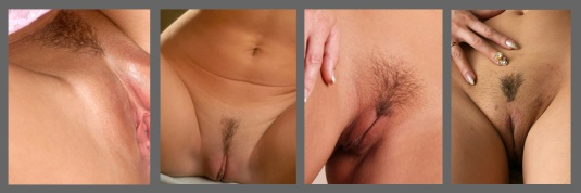 Pubic hair in the triangle cut style