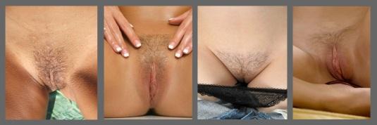 Short trimmed pubes