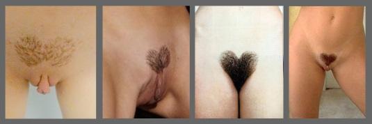 nude v shape girl vagina