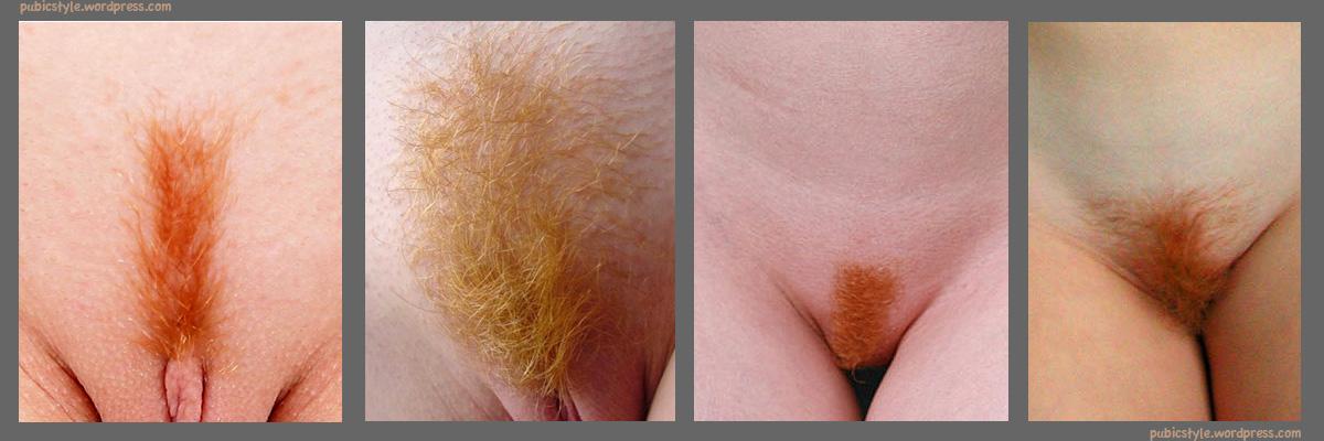 Redhead pubic