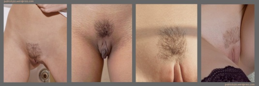Pubic hair in a square style