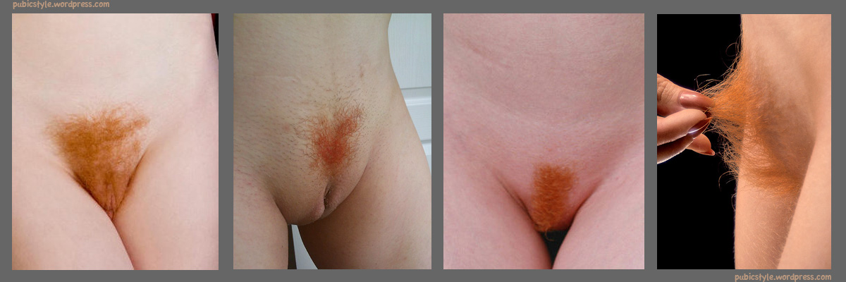 white-bbw-erotic-stories-pubic-bush-shaving-pics-lanka-xxx