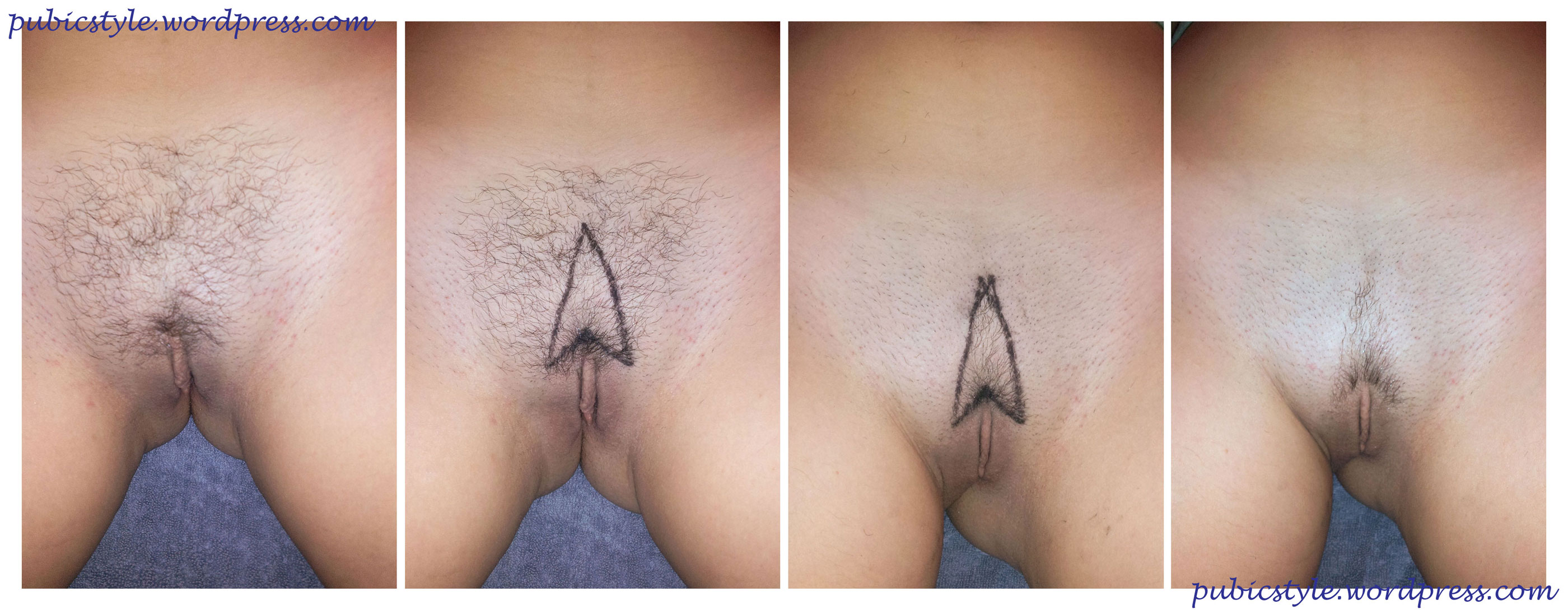 Female pubic hair styles
