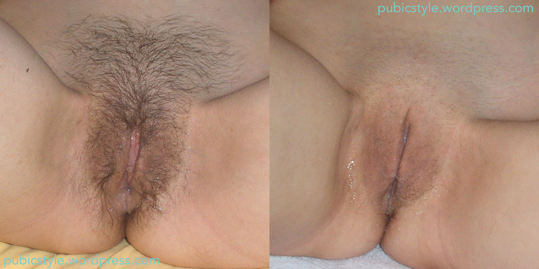 pubicstyle | featuring women's pubic hair styles, and pubic hair